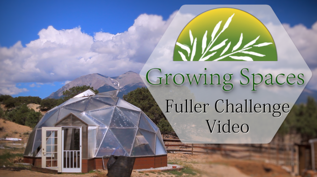 Fuller Challenge grfx 2